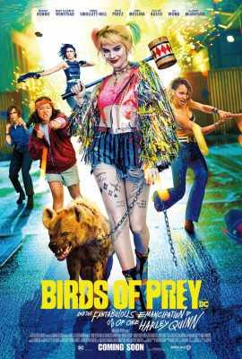 Plėšriosios paukštės ir fantastiškoji Harlė Kvin